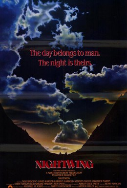 Постер фильма Ночное крыло (1979)