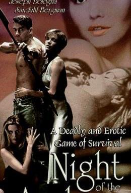 Постер фильма Ночь лучника (1994)
