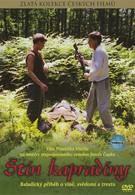 Тень папоротника (1986)