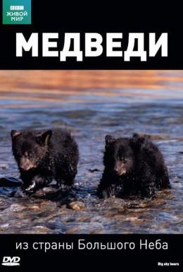 Постер фильма BBC: Медведи из страны большого неба (2006)