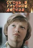 Огонь в глубине дерева (1978)