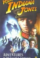 Приключения молодого Индианы Джонса: Шпионские игры (1999)