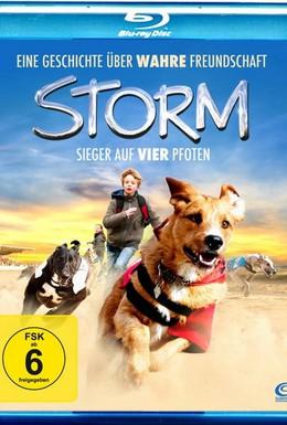 Постер фильма Буря (2009)
