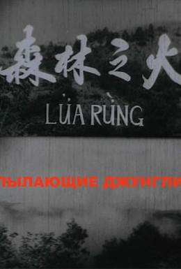 Постер фильма Пылающие джунгли (1965)