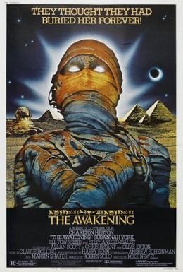 Постер фильма Алмаз семи звезд (1980)