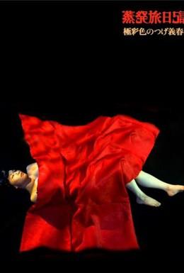Постер фильма Одиссея души (2003)
