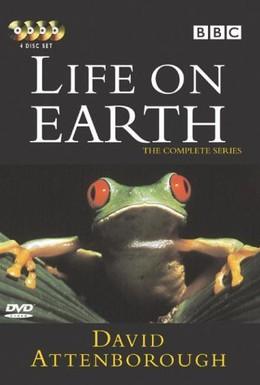 Постер фильма Жизнь на Земле (1979)