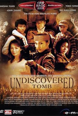 Постер фильма Расхитители гробниц (2002)