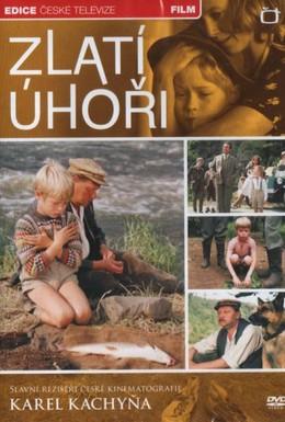 Постер фильма Золотые угри (1979)