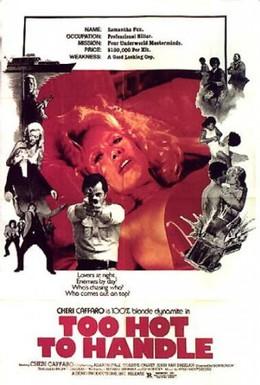 Постер фильма Слишком рискованно (1977)