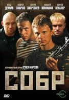 СОБР (2010)