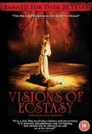 Видения экстаза (1989)