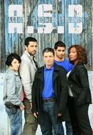 Расследует таможня (2009)