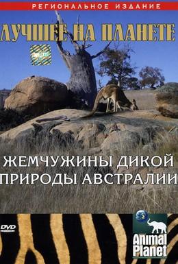 Постер фильма Animal Planet: Жемчужины дикой природы Австралии (2007)