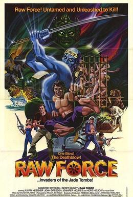 Постер фильма Неукротимая сила (1982)