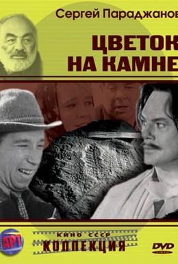 Постер фильма Цветок на камне (1962)