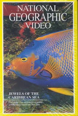 Постер фильма National Geographic: Жемчужины Карибского моря (1994)