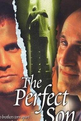 Постер фильма Идеальный сын (2000)