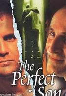Идеальный сын (2000)