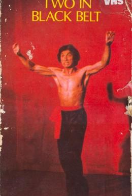 Постер фильма Двое в черном поясе (1978)