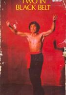 Двое в черном поясе (1978)