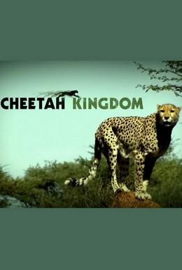 Постер фильма Царство гепардов (2010)