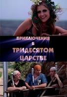 Приключения в Тридесятом царстве (2008)