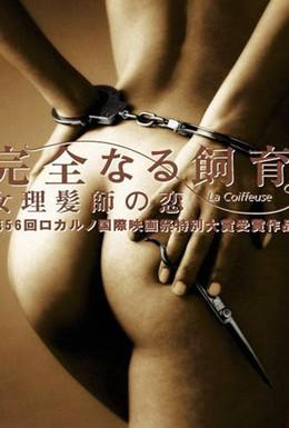 Постер фильма Идеальное образование 5 : Удивительная история (2003)