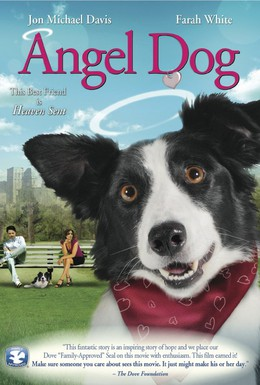 Постер фильма Собака ангел (2011)