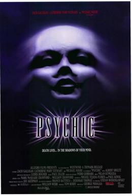 Постер фильма Психопат (1991)