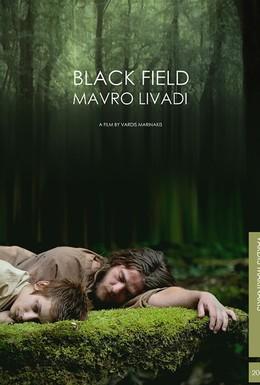 Постер фильма Черное поле (2009)