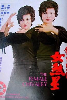Постер фильма Женское рыцарство (1974)