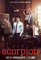 Скорпион (2014)