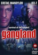 Зона криминала (2001)
