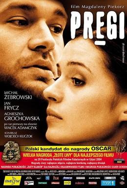 Постер фильма Рубцы (2004)
