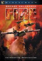 Стихия огня (2004)
