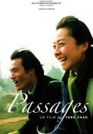 Пассажи (2004)