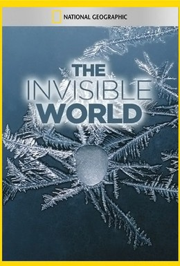 Постер фильма Невидимый мир (1979)