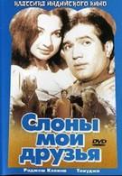 Слоны – мои друзья (1971)