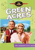 Зеленые просторы (1966)