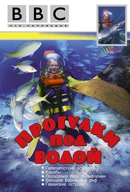 Постер фильма BBC: Прогулки под водой (1991)