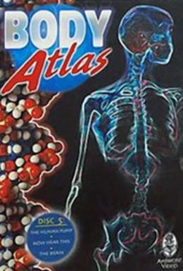 Постер фильма Атлас тела (1994)