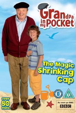 Постер фильма Мой дед – волшебник! (2009)