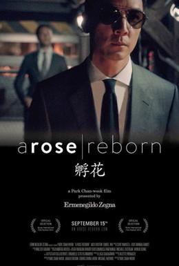 Постер фильма Возрождение жизни (2014)