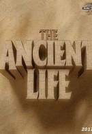 Тайны древних цивилизаций (2011)