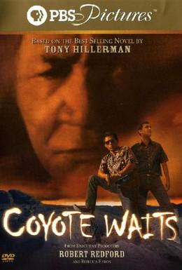Постер фильма Койот выжидает (2003)