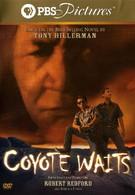 Койот выжидает (2003)