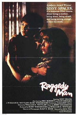 Постер фильма Бродяга (1981)
