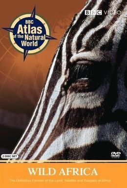 Постер фильма BBC: Дикая Африка (2001)