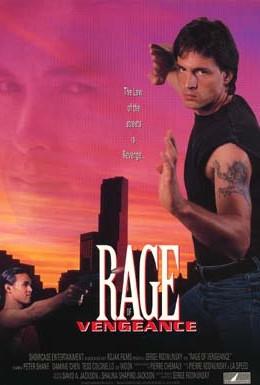 Постер фильма Ярость мести (1993)